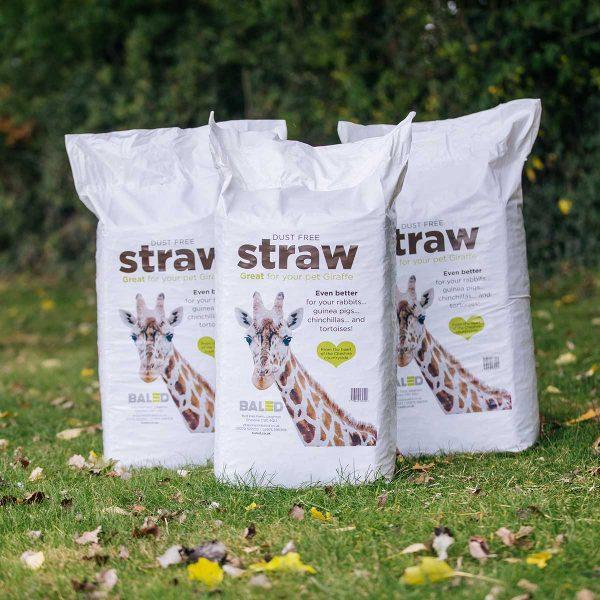Bagged-Straw