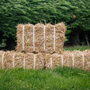 Baled-Straw