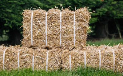 How to use Party Bales for your event