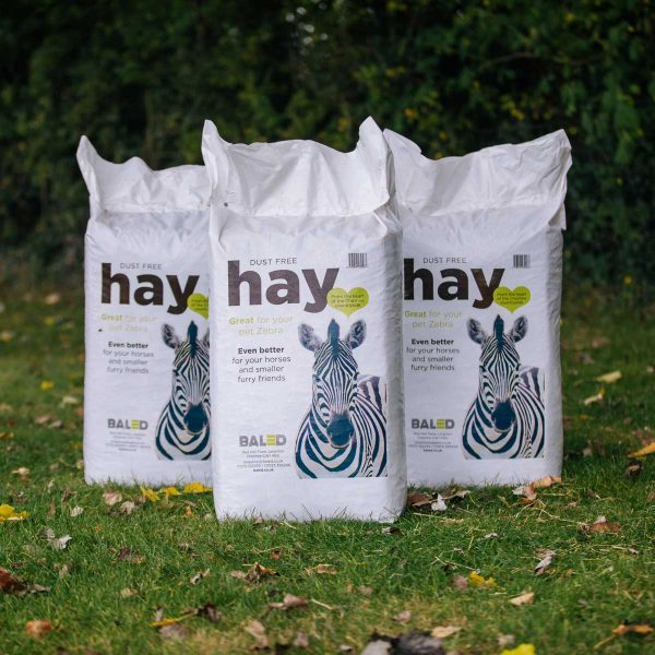 bagged-grass-hay