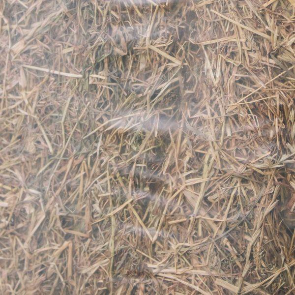 lots of hay 2
